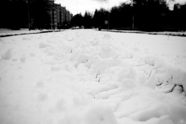 La revue d'actu spéciale faits d'hiver