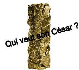 Régionales : DailyNord décerne ses César