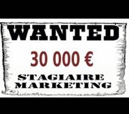 A Lille : je suis stagiaire et je gagne 10 000 euros par mois