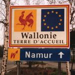 Huit bonnes raisons d'accueillir la Wallonie