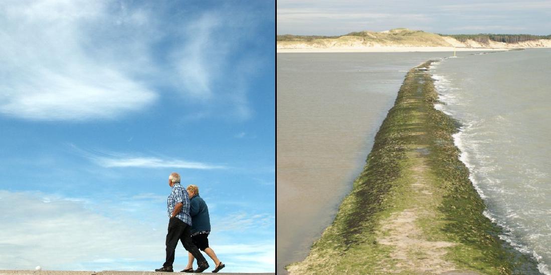 Vu de la digue 5 5 du touquet berck sur mer dailynord dailynord - Ville de berck sur mer office du tourisme ...