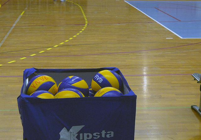 Le club de volley-ball d'Harnes n'évoluera plus en ligue B de sitôt. Crédit photos alainalele sur FlickR