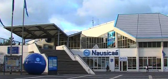 Le Petit Dico Décalé du Nord-Pas-de-Calais : Nausicaa