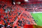 Le VAFC dégringole, merci pour le stade du Hainaut !