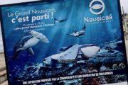 Pourquoi vous entendez (beaucoup) parler de Nausicaá